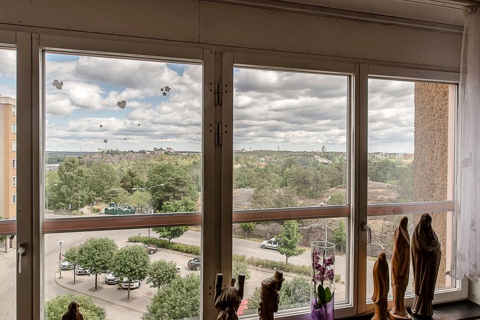 Utsikt från vardagsrummet