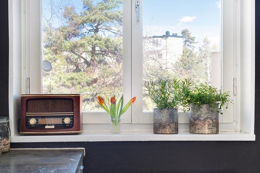 Detaljbild i köksfönstret