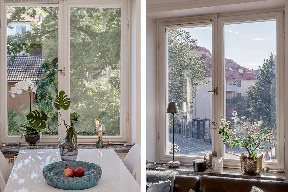 Utsikt från vardagsrummets bägge fönster